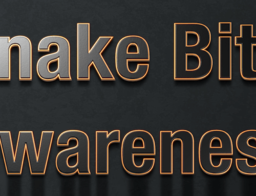 Snake bite awareness