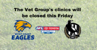 The Vet Group Clinics Closed Friday