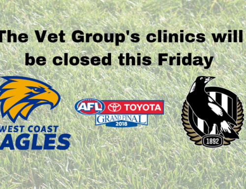 Grand Final Public Holiday