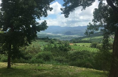 view across taiwanese agricultural land