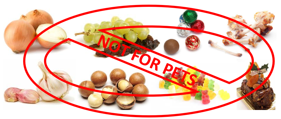 pictures of foods toxic for dogs and cats